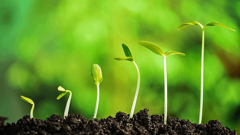 【成長戦略】お客様と当社の継続的な成長のための様々な取り組みをご紹介します