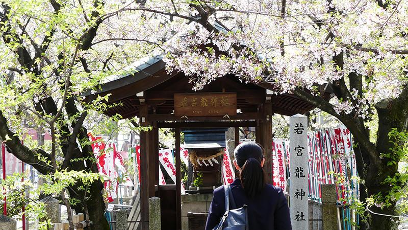 【Nakasha for the Future】大須の街をまわってみた