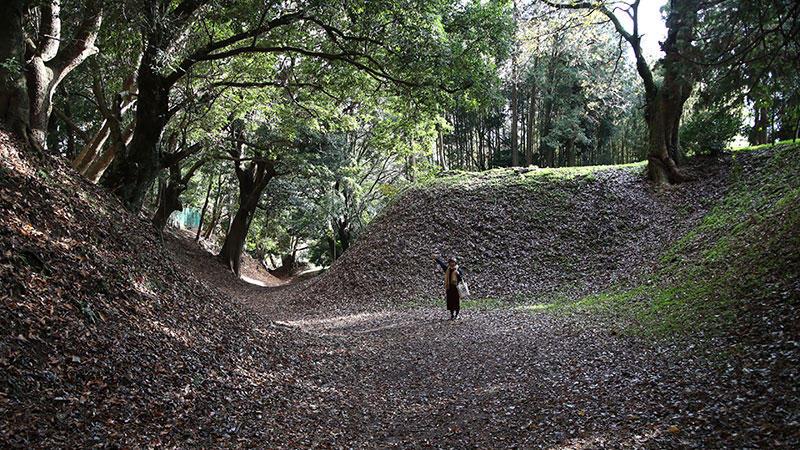 【社員がゆく】小田原城総構を散策してきました