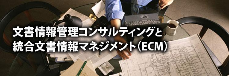 文書情報管理コンサルティングと統合文書情報マネジメント(ECM)